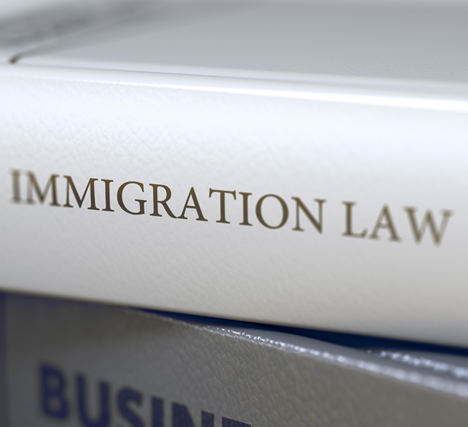 Image depicting Immigration Lawyer